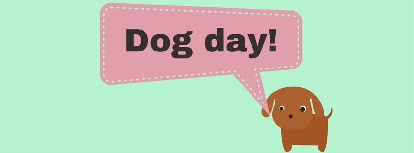 Dog Day (2)